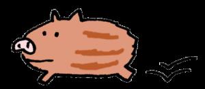 無料イラスト・走るうり坊・ダッシュする猪の子ども