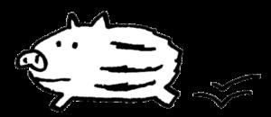 フリー素材・走るウリ坊・いのししのイラスト・亥・手描き・モノクロ