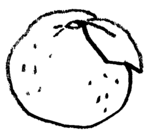 無料素材・柚子・ゆず・ユズのイラスト・モノクロ