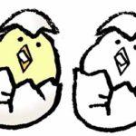 フリーイラスト・ヒヨコ・卵・生まれたて・かわいい手書き