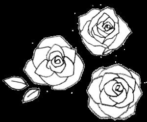 バラの花・薔薇・モノクロ手書き・かわいい・フリーイラスト