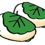 フリーイラスト・かわいい手書き・無料素材・端午の節句・こどもの日・柏餅・かしわもち