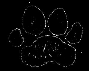 トラ・とら・虎・イラスト・手書き・可愛い・年賀状・干支・2022年・フリー・シンプル・ゆるかわいい・正月・タイガー・手形・足形・肉球